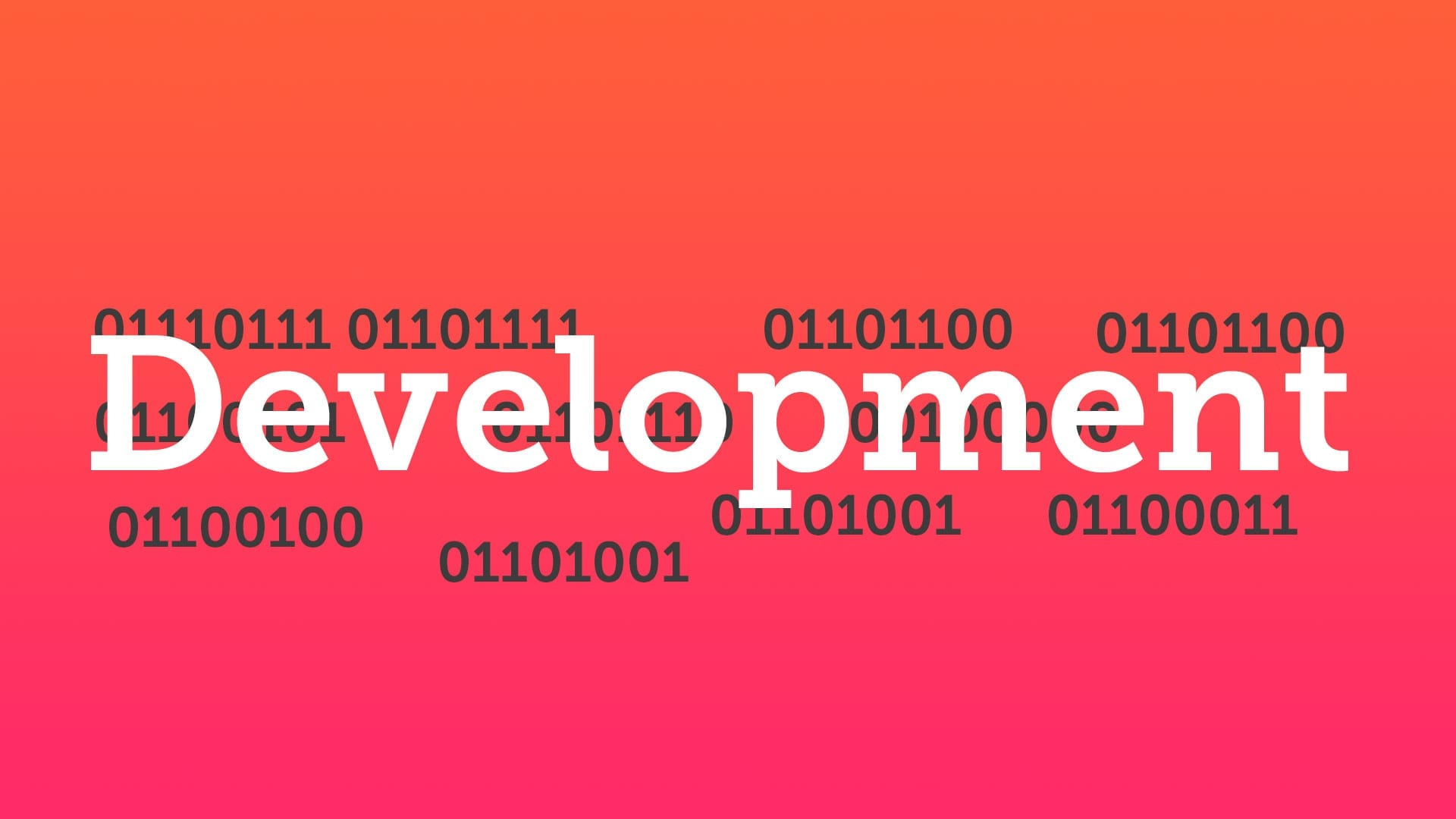 Developer/Consultent bei dietz